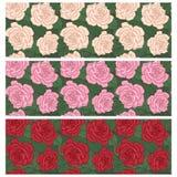 Rose seamless pattern set Stock Photos