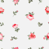 Rose seamless pattern Royalty Free Stock Photos