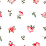 Rose seamless pattern Royalty Free Stock Photo