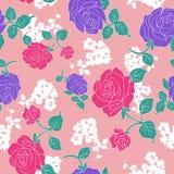 Rose seamless pattern Stock Image