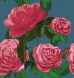 Rose seamless pattern Royalty Free Stock Photos