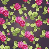 Rose seamless pattern, vector Stock Photos