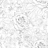 Rose seamless. Stock Images