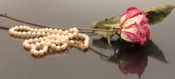 Rose secada con las perlas Fotografía de archivo