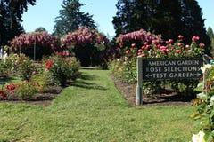 Rose Selections Test Garden Portland Stock Photography
