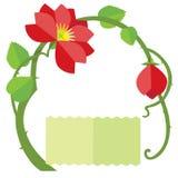 Rose selvatiche Fotografie Stock