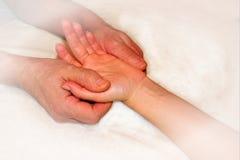 Rose rose sensible affectueusement tenue dans des deux mains, fond blanc d'isolement avec le chemin de coupure photographie stock