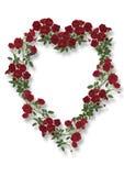 rose serce Obraz Stock