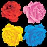 Rose Set. Set of 4 3D roses Vector Illustration