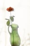 Rose shadow on textile courtain. Rose shadow on white textile courtain Stock Photos
