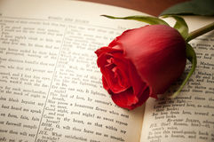 Rose on Shakespeare. A red rose laying on a vintage Shakespeare book open to Romeo and Juliet Stock Photo