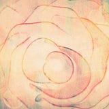 Rose shape Royalty Free Stock Image