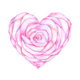 Rose in the Shape of Heart Watercolor Work Stock Photography