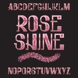 Rose Shine stilsort Rosa guld- blänka stilsort Isolerat utsmyckat engelskt alfabet royaltyfri illustrationer
