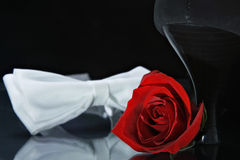 Rose, shoe and bow-tie. Red rose with high-heel shoe and white bow-tie Royalty Free Stock Photos