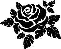 Rose silhouette Stock Image
