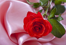 Rose on silk Royalty Free Stock Photography