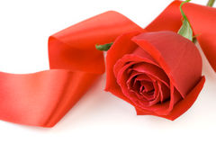 Rose with silk ribbon Stock Photo