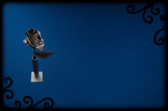 rose silver Arkivfoto