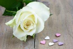 Rose simple de blanc avec des sucreries de coeur Images stock