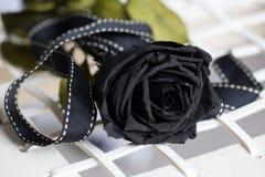 Rose simple de noir Images libres de droits