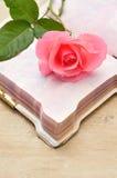 Rose simple de rose dans un carnet ouvert Images stock