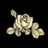 Rose sketch Stock Photo