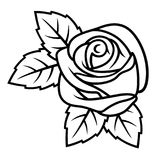 Rose sketch 003. Sketch of Rose isolated on white background. Use for fabric design, tattoo, pattern and decorating greeting cards, invitations Stock Images