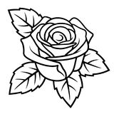 Rose sketch 004. Sketch of Rose isolated on white background. Use for fabric design, tattoo, pattern and decorating greeting cards, invitations Stock Photos