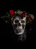 Rose and Skull Royalty Free Stock Images