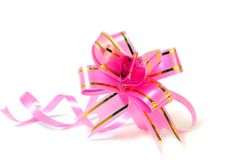 Rose small bow. Royalty Free Stock Photo