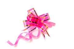 Rose small bow. Royalty Free Stock Images