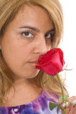 Rose Smell Royalty Free Stock Image