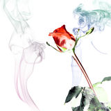 Rose and smoke Royalty Free Stock Photography