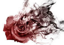The rose from the smoke Royalty Free Stock Photos