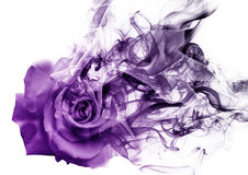 The rose from the smoke. Gradient rose which becomes smoke Royalty Free Stock Image