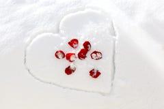 rose snow för hjärta Arkivbild