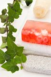 Rose soap with bath items. Red soap on a white towel with bath items and green branch stock photos