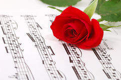 Rose soyeux rouge et notes Photo libre de droits