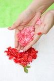 Rose spa Royalty Free Stock Photo