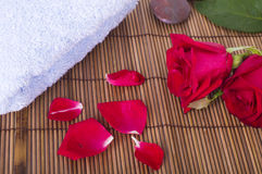 Rose spa concept Stock Photography