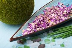 Rose spa petals Royalty Free Stock Photo