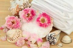 Rose Spabehandling Royaltyfri Bild