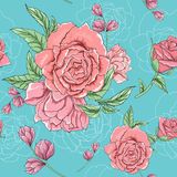 Rose spring. This is illustration of vector flower seamless Stock Images