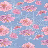 Rose spring. This is illustration of vector flower seamless Royalty Free Stock Images