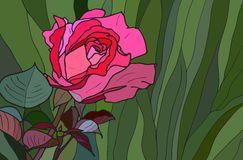 Free Rose Stained Glass Window Royalty Free Stock Images - 25891939