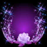 Rose and stars Royalty Free Stock Photo