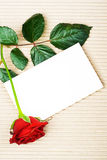 Rose with stationery. Single red rose with stationery on paper background Royalty Free Stock Photo