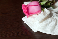 Rose and stockings Royalty Free Stock Image