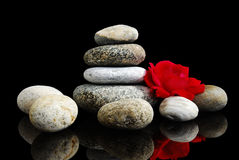 Free Rose & Stones Royalty Free Stock Images - 13035649